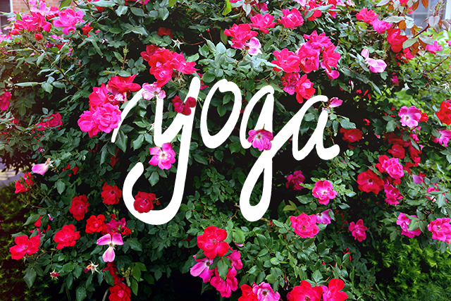 Practicing Yoga in Spring 2016-By Concord Yoga instructor Noemi Tuba